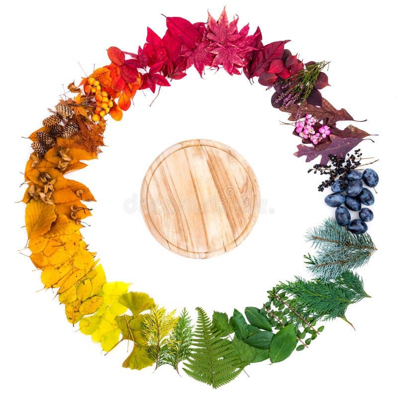 Hölzernes Brett innerhalb des bunten herbstlichen Kreises gemacht von den Blättern und von den natürlichen Gegenständen lizenzfreies stockfoto