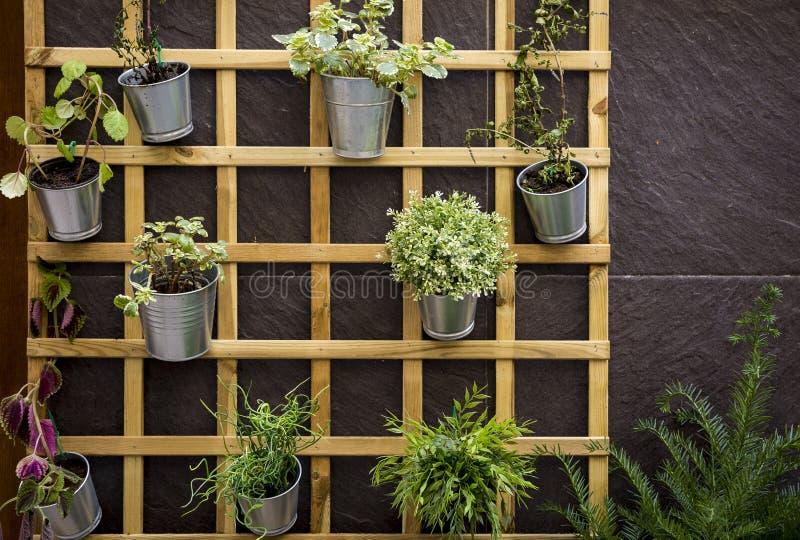 Hölzernes Gitter auf einer Wand hergestellt vom Stein mit metallischen Blumentöpfen stockbild