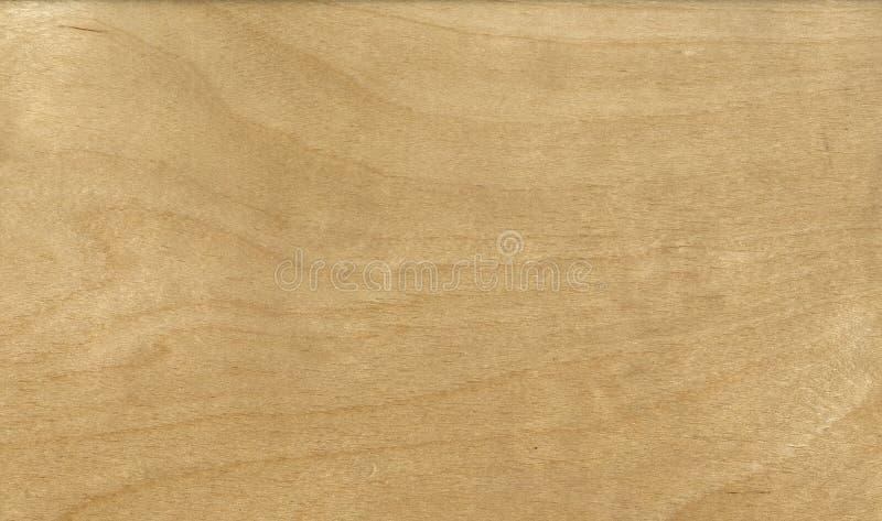 Hölzernes Korngefüge, Kiefernholz die Beschaffenheit des Holzes, Rissausschnitt lizenzfreie stockbilder