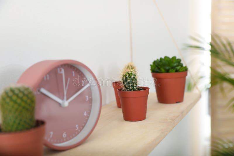 Hölzernes Regal mit Uhr und Anlagen auf weißer Wand lizenzfreies stockfoto