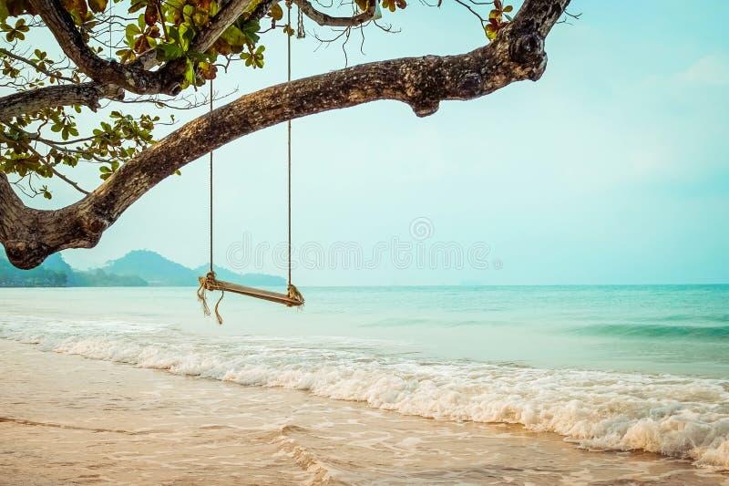 Hölzernes Schwingen auf tropischem Strand stockbild