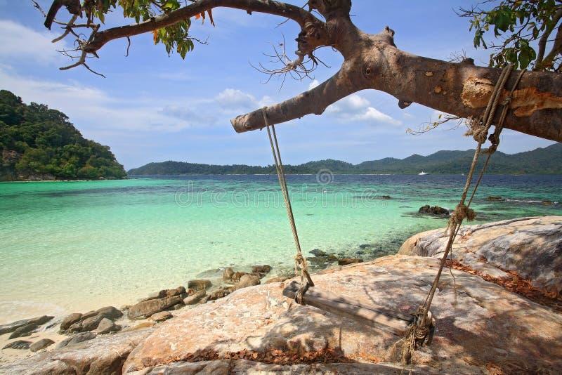 Hölzernes Schwingen, das am Baum am tropischen Strand hängt lizenzfreie stockfotos