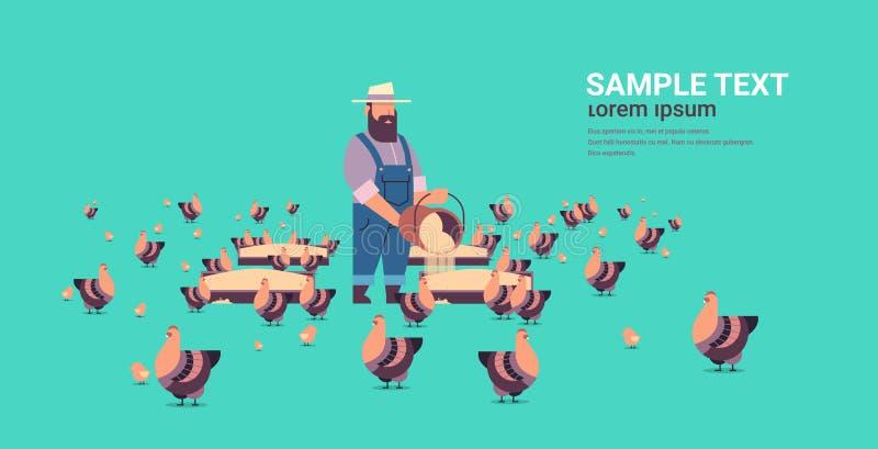 Höna och tupp för manlig bonde matande fritt område som brukar avel hed för full jordbruksmark för mathönseribegrepp framl vektor illustrationer