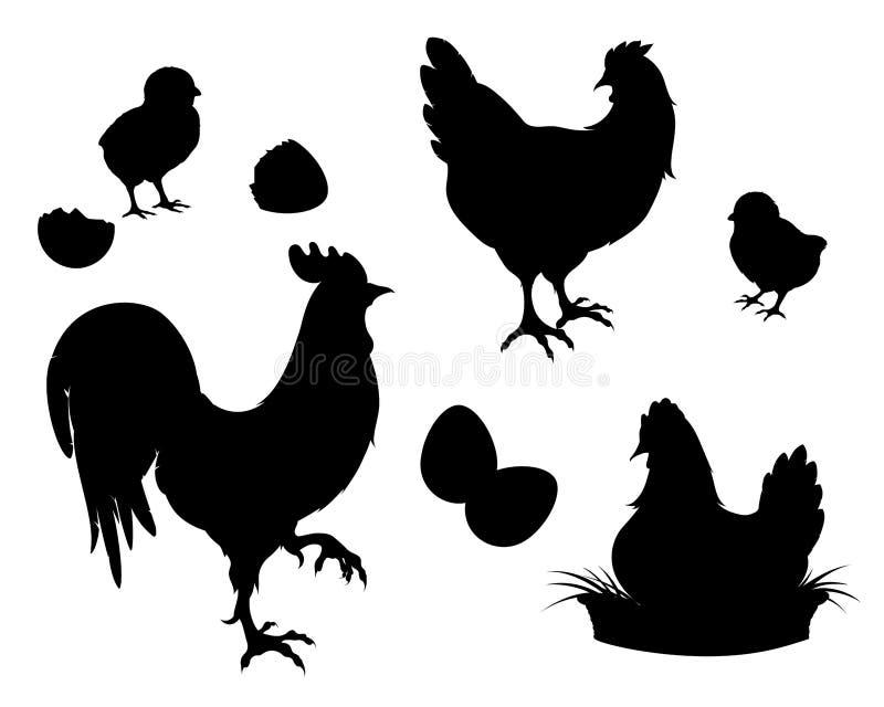 Höna tupp, fågelungar, ägg, svart kontur vektor illustrationer