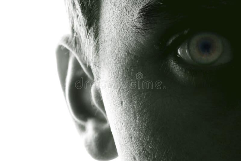 Hörfähigkeit und Anblick stockfotografie