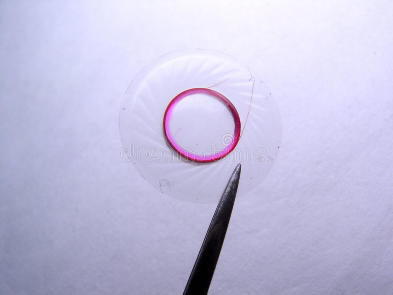 Hörmuschelmembrane