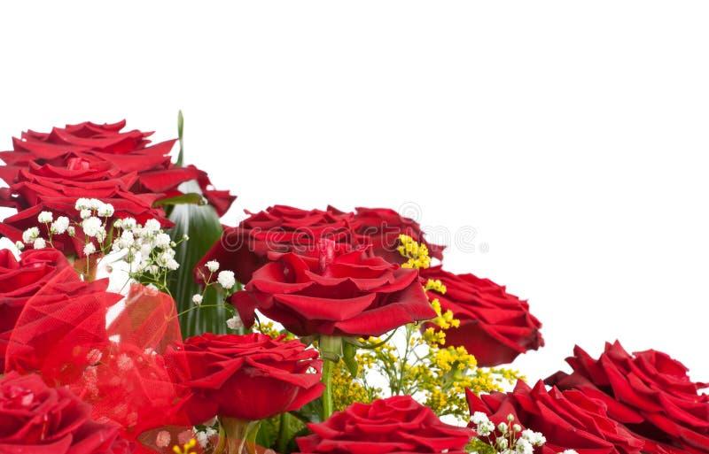 Hörn av röda rosor royaltyfria bilder