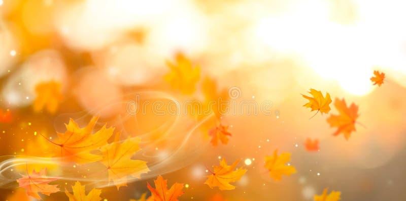 Höst Abstrakt höstlig bakgrund för nedgång med färgrika sidor fotografering för bildbyråer
