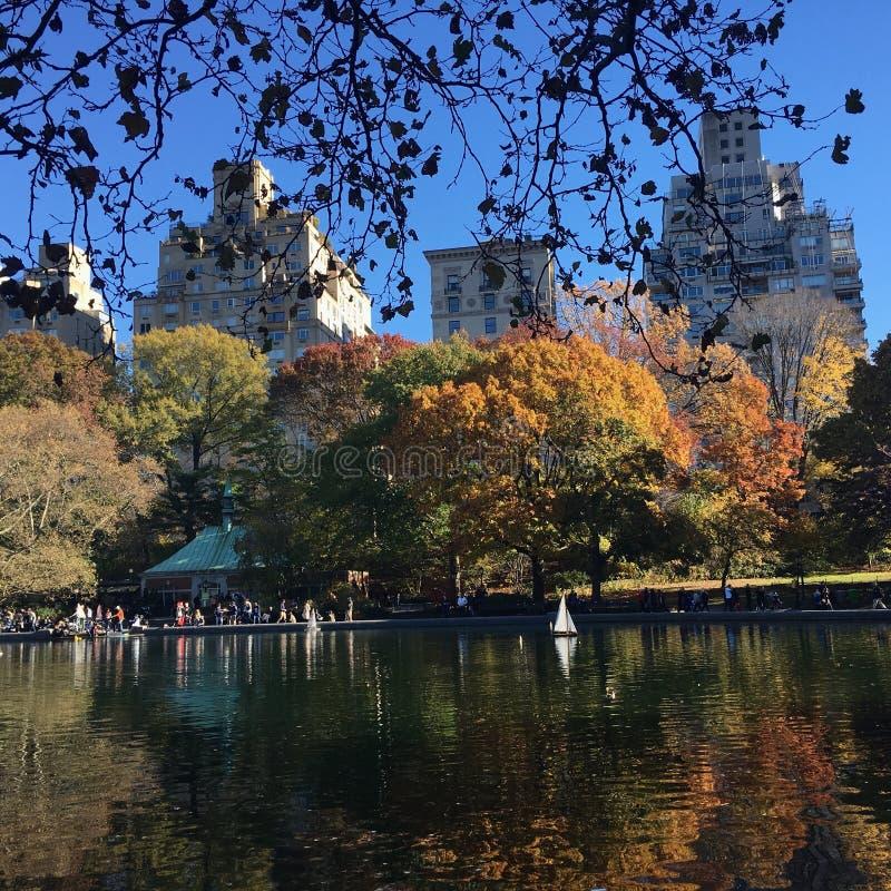 höst Central Park royaltyfria bilder