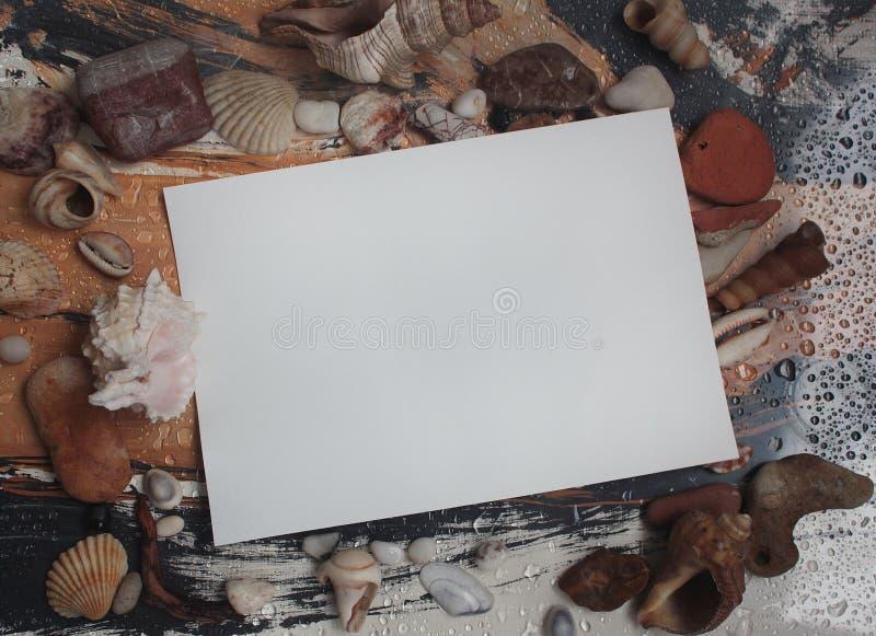 höst, droppar av vatten, snäckskal och en vykort för dig royaltyfri foto