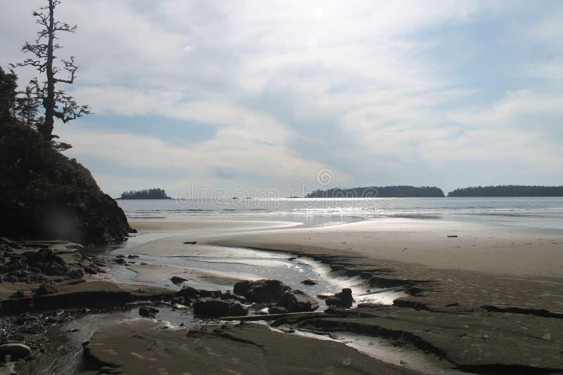 Höst för nedgång för strand för erosionliten vikdeformering royaltyfria foton