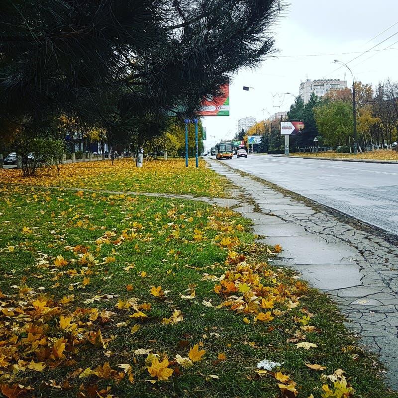 Höst i Moldavien arkivfoton
