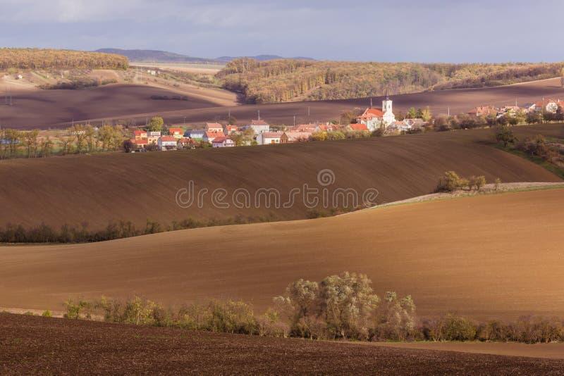 Höst i Moravia royaltyfri foto