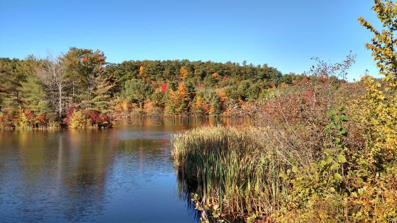 Höst i New Hampshire royaltyfria foton