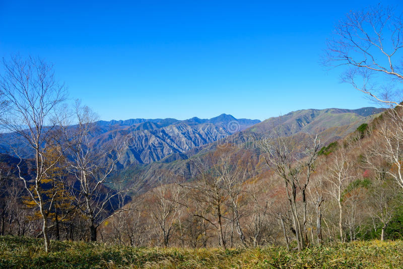 Höst i Oku-Nikko royaltyfri foto