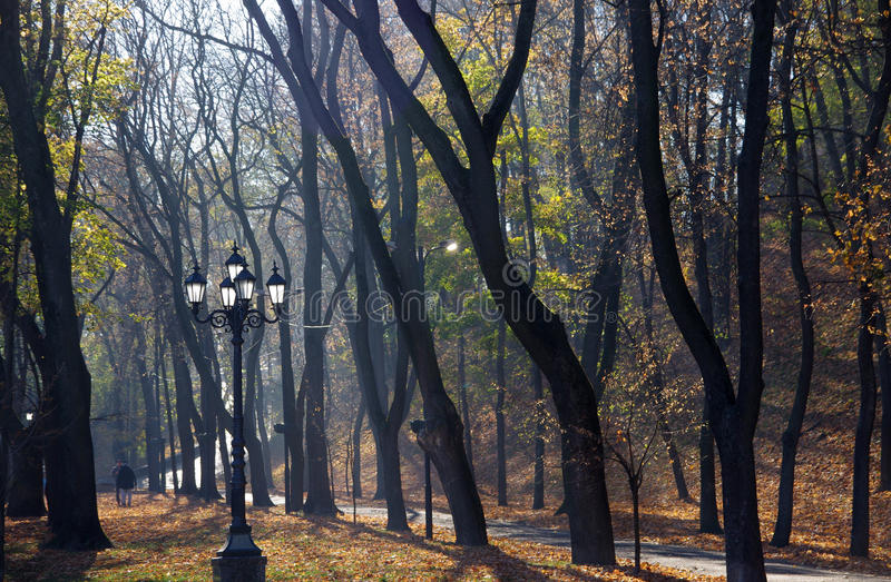 Download Höst i parkera arkivfoto. Bild av leaf, säsonger, trees - 78729134