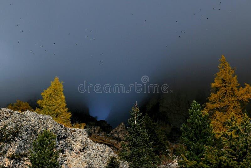 Höst i Rosengartenen - Dolomites royaltyfri foto