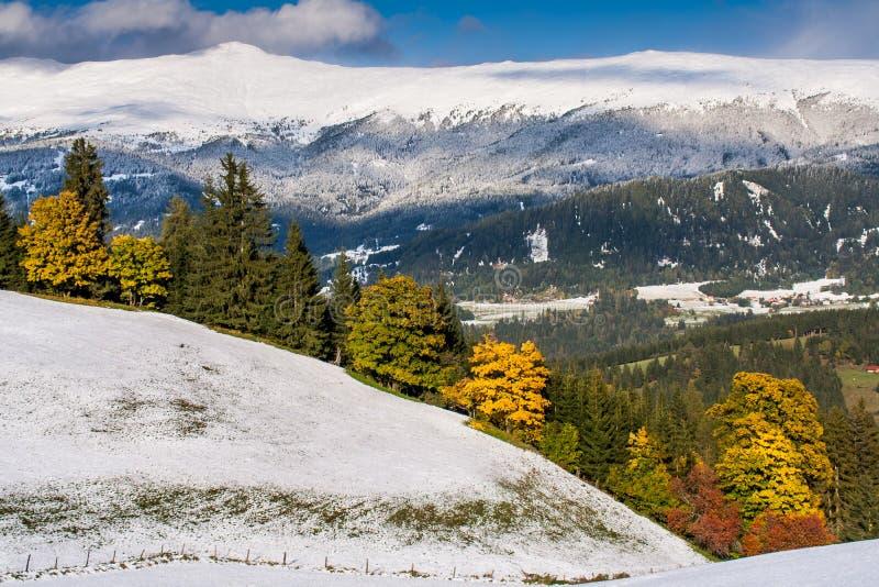 Höst i skogen med snö och färgrika träd royaltyfria foton