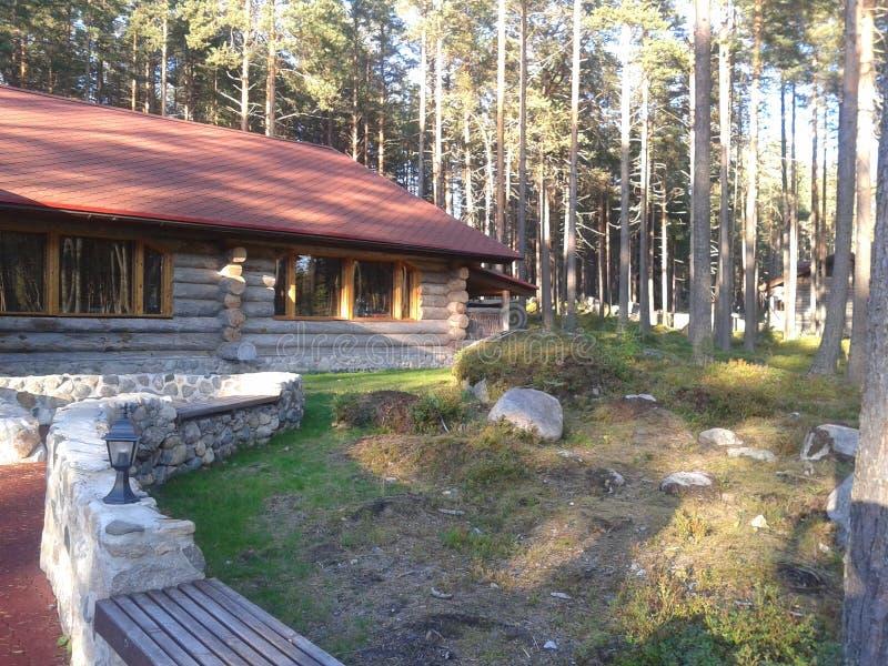 Höst Karelia, jakt, skog, landskap, Lake Ladoga royaltyfri foto