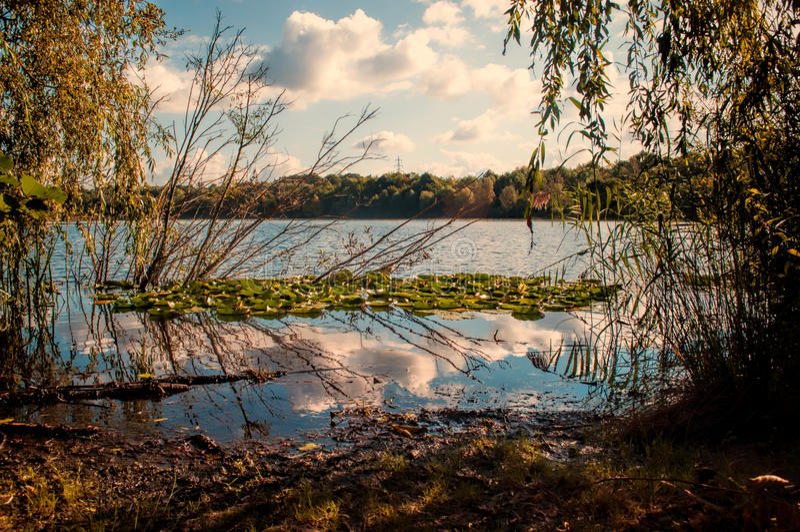Höst lake arkivbilder