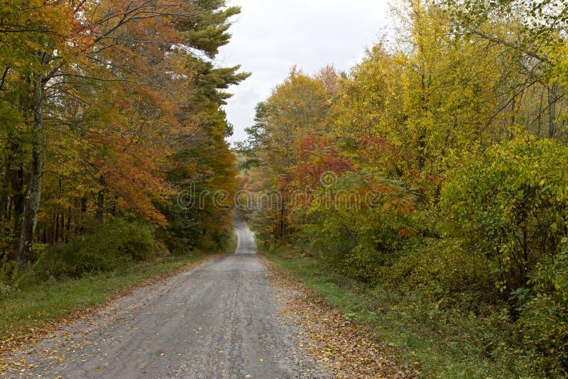 Höst New England arkivbild