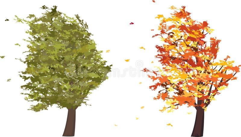 Höst- och sommargrungeträd i vinden vektor vektor illustrationer
