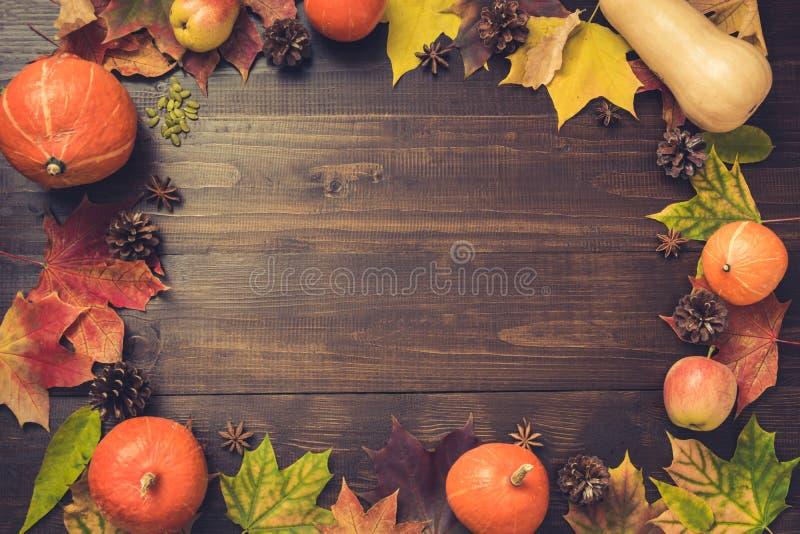 Höst- och tacksägelsedaggräns av färgrika sidor och pumpa på träbräde kopiera avstånd Nedgångbegrepp guld- fall royaltyfria foton
