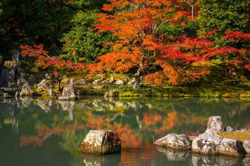 Höst på zenträdgården i Arashiyama, Japan arkivfoto