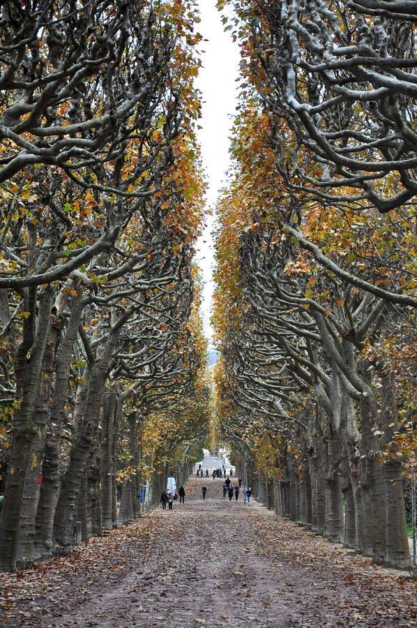 höst paris fotografering för bildbyråer