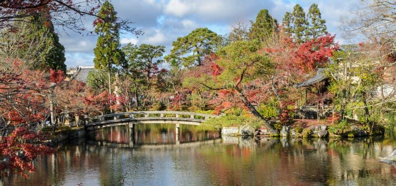 Höst som färgas på Eikando eller den Zenrin-ji templet i Kyoto, Japan fotografering för bildbyråer