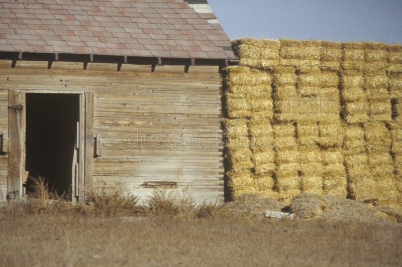 Höstackar bredvid en gammal ladugård i sydlig UT royaltyfria bilder