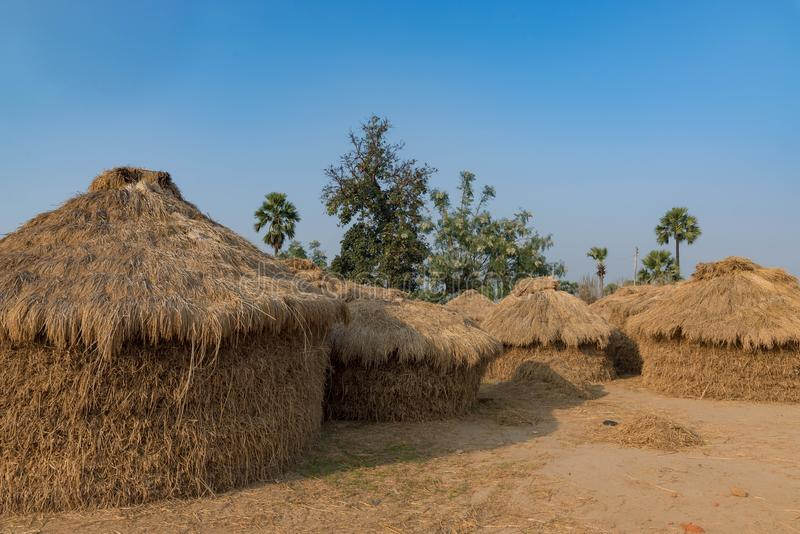 Höstackar för matande djur i Indien royaltyfria bilder
