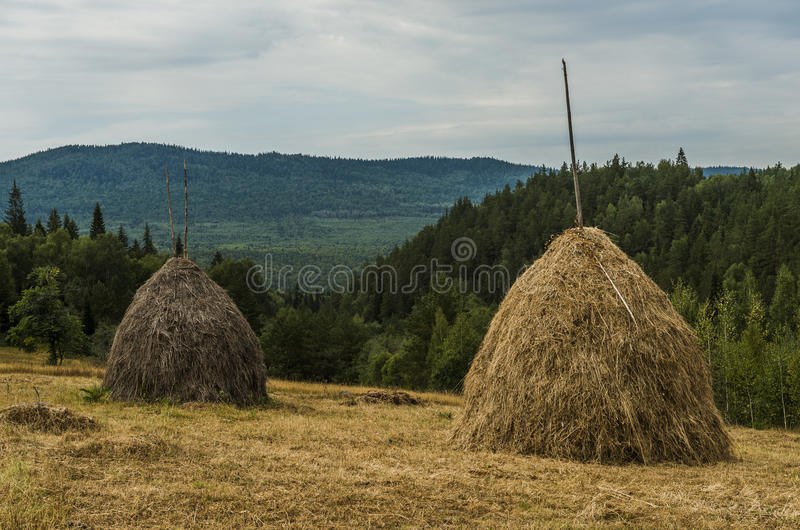 Höstackar i bergen fotografering för bildbyråer