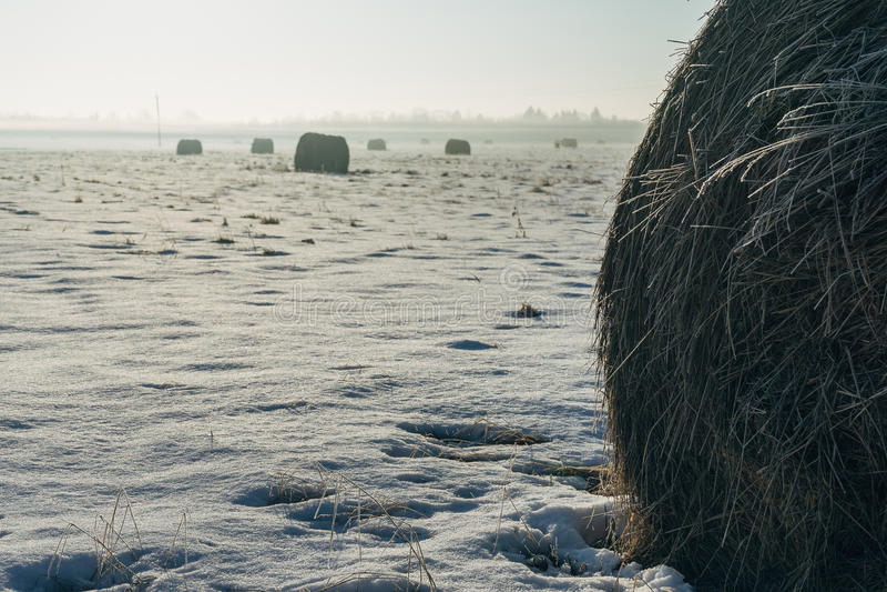 Höstackar och jordbruksmarkfält vid vintermorgon arkivfoton