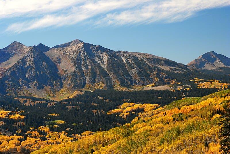 Höstaspar nära det Kebler passerandet i Colorado fotografering för bildbyråer