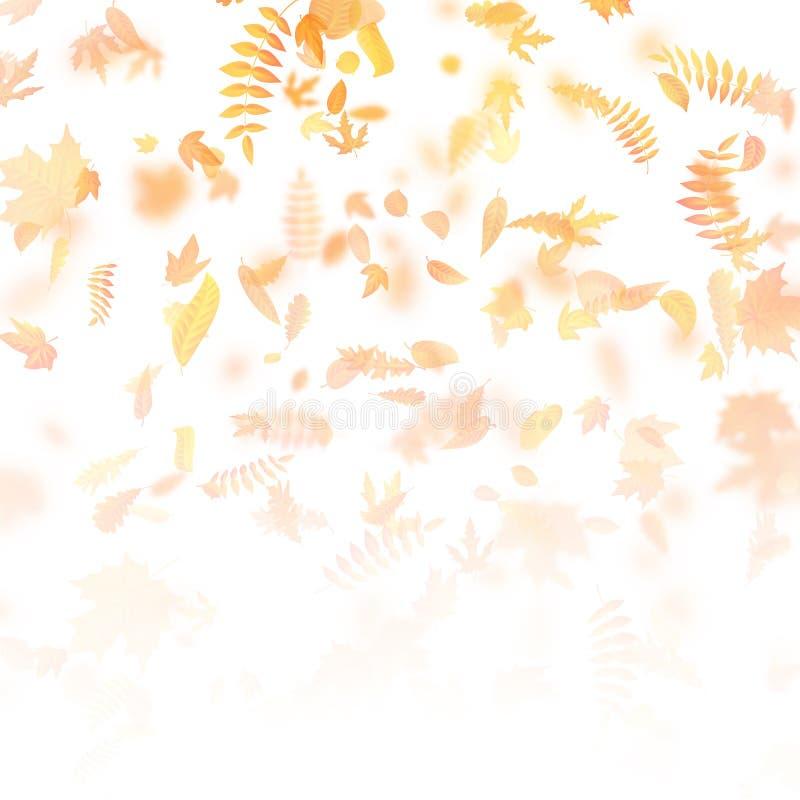 Höstbakgrund med lämnar tillbaka skolamall till 10 eps vektor illustrationer