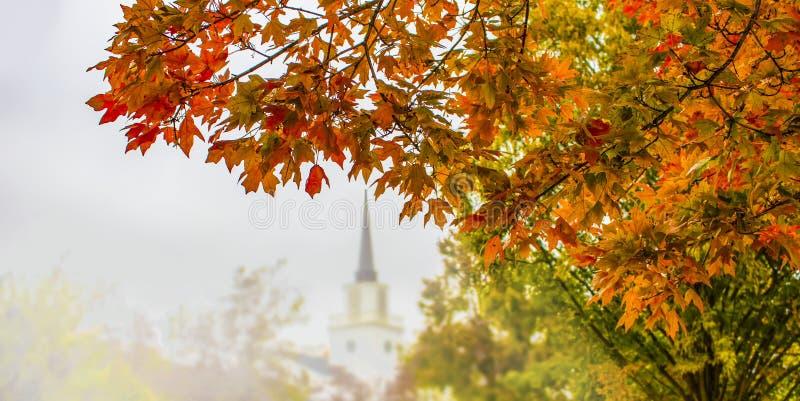 Höstbakgrund med ljust färgad lövverk i förgrund på sido- och blurreträd och kyrka med kyrktorn i hal bakgrund - arkivfoton