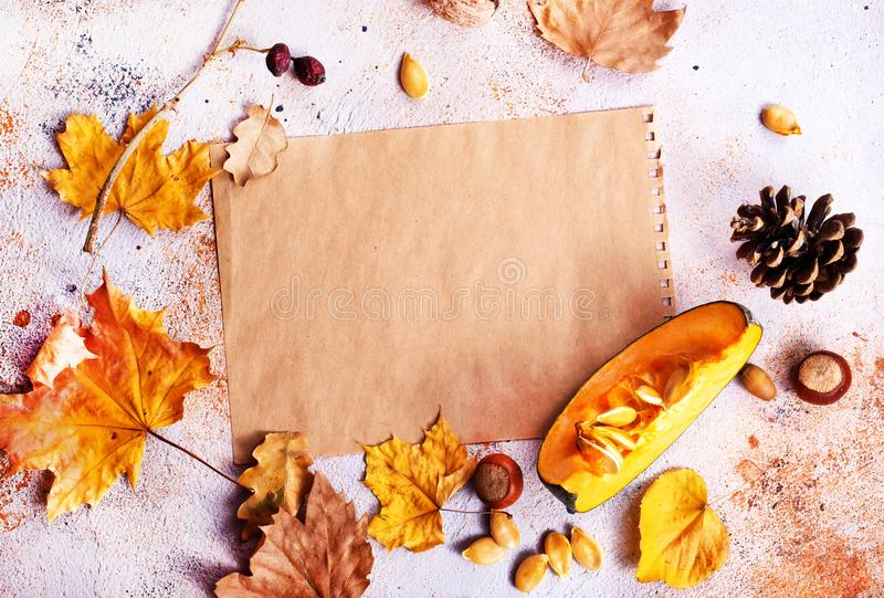 höstbakgrundscloseupen colors orange red för murgrönaleaf royaltyfri bild