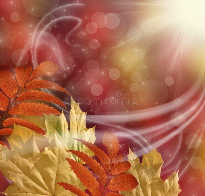 höstbakgrundscloseupen colors orange red för murgrönaleaf vektor illustrationer