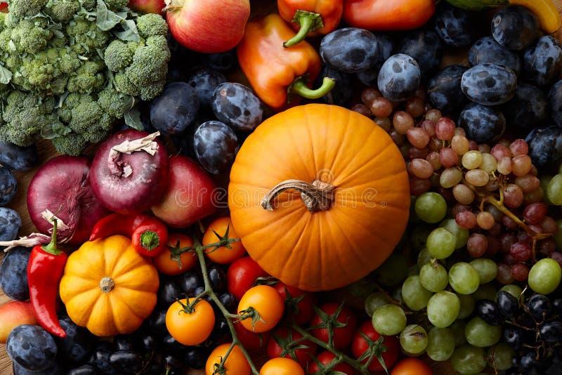 Höstbegrepp med säsongsbetonade frukter och grönsaker fotografering för bildbyråer
