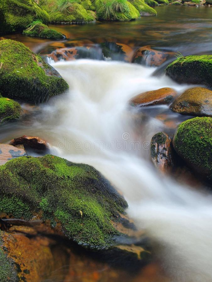 Höstbergfloden med suddiga vågor, vatten kör mellan mossiga stenblock, och bubblor skapar slingor på nivå royaltyfria foton