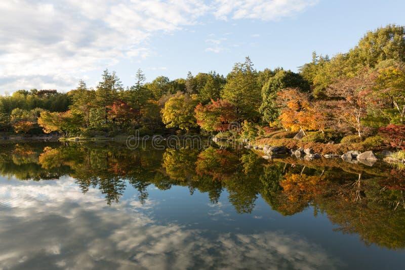 Höstblad i Japan fotografering för bildbyråer