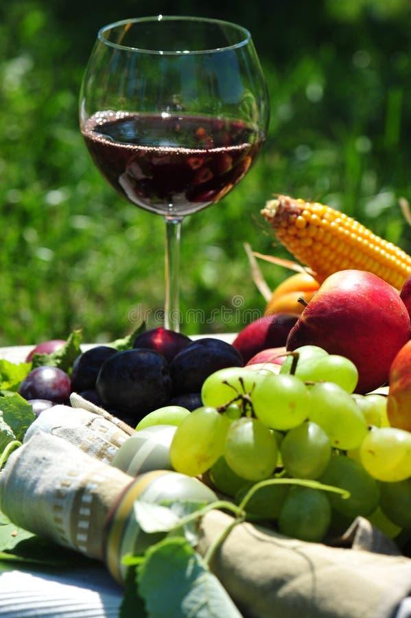 hösten bär fruktt rött vin royaltyfria foton