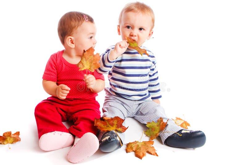 hösten behandla som ett barn arkivbild