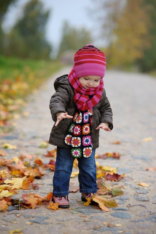 hösten behandla som ett barn llittleparken royaltyfria bilder