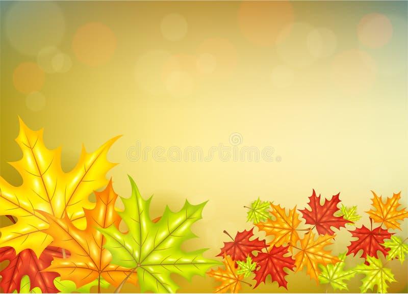 Hösten blad bakgrund royaltyfri illustrationer