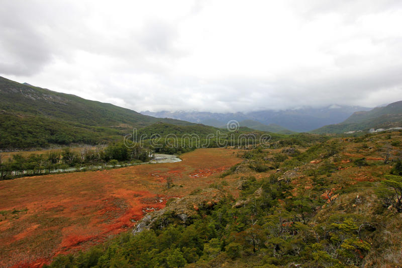 Hösten färgade landskap längs vägen till Puerto Williams, Tierra Del Fuego, Chile arkivbilder