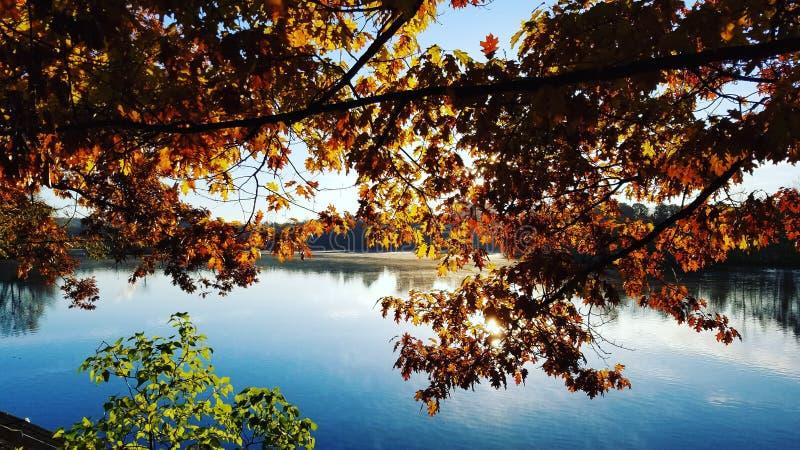 Hösten färgar arkivfoto