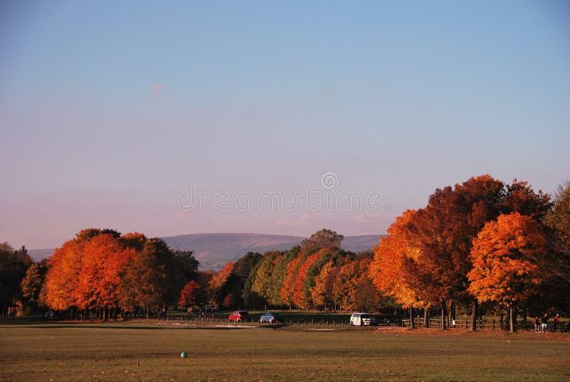 Hösten färgar royaltyfri fotografi