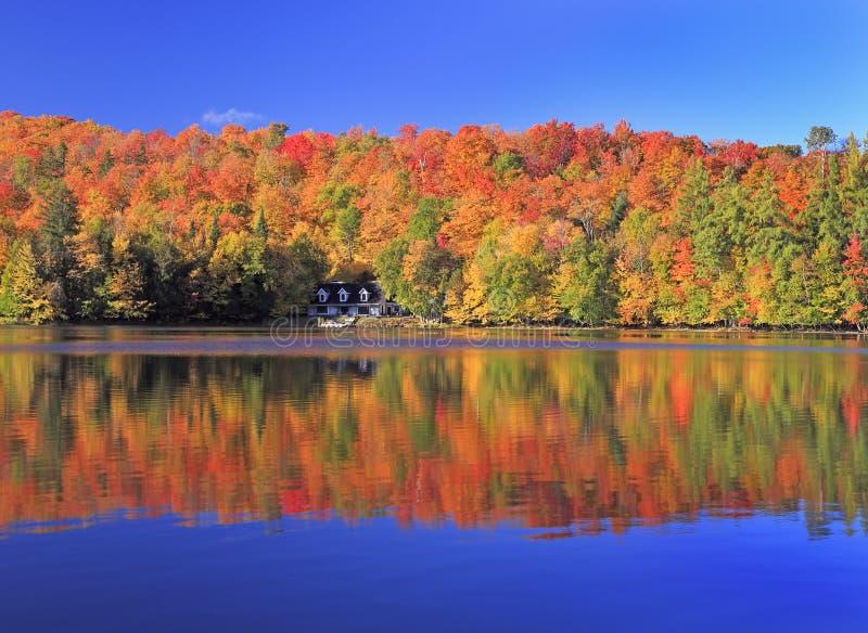 Hösten färgar på sjön, Mont Tremblant område, Quebec royaltyfri fotografi